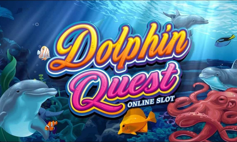 Dolphin Quest Reviews